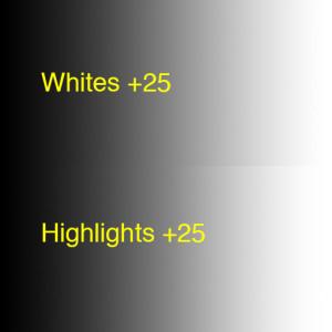 CompareWhitesHighlights+25