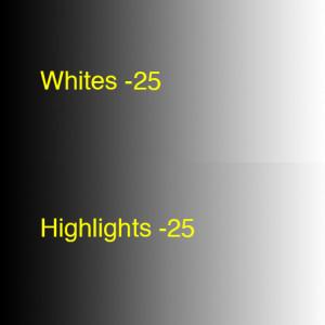 CompareWhitesHighlights-25
